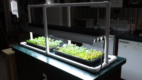 Different Types of Hydroponic Lighting